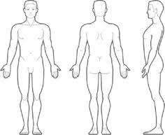 Picture Human Body Body Outline Medical Clipart Clipartfest
