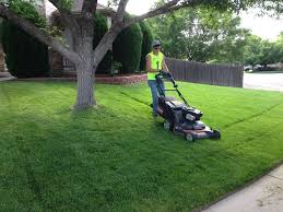 happy roots lawn mowing service happy roots thornton lawn care