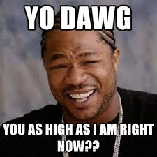 High Memes - yo dawg you as high as i am right now create meme