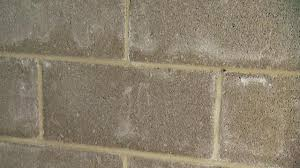 how to clean wall stains removing efflorescence from concrete block walls today s homeowner