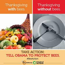 thanksgiving nutrition november 2014 yvonnes vegan kitchen
