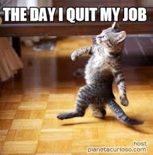 Meme Generator Cat - meme maker the day i quit my job meme generator furry friends