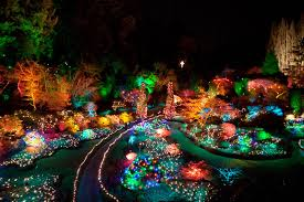 The Garden Of Lights At Emperors Palace Hello Jhb