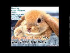 http www desievite 5 year birthday 55 year