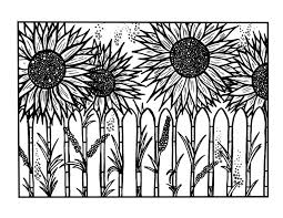 Sunflower Coloring Pages Behind The Fence Coloringstar Sunflower Coloring Page