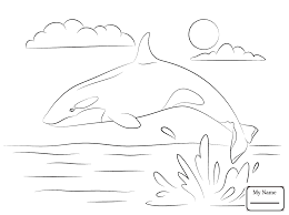 coloring page killer whale sure fire coloring pages of killer whales refu 14485 unknown