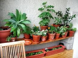 ideas for small garden spaces lovely garden designs for small