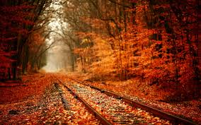 autumn nature wallpapers hd pictures u2013 one hd wallpaper pictures