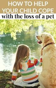 loss of pet how to help your child cope with the loss of a pet moment