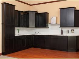 In Stock Kitchen Cabinets Home Depot 76 Creative Agreeable Homedepot Kitchen Cabinets Design