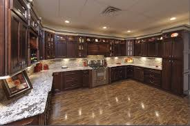 Dark Shaker Kitchen Cabinets Chocolate Color Kitchen Cabinets Gallery Also New House Pictures