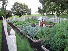 Vegetable Garden Designs For Small Yards by State Of Our Landscape Address Garden Housecalls
