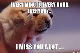 I Miss U Meme - lovely 24 miss u meme wallpaper site wallpaper site