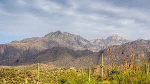 tucson visitors bureau best 37 things to do see in tucson arizona activities