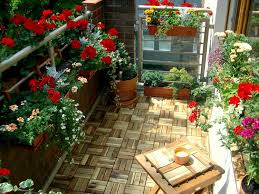 Garden Tips And Ideas 18 Balcony Gardening Tips To Follow Before Setting Up A Balcony