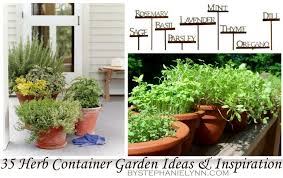 Patio Container Garden Ideas 35 Herb Container Gardens Pots Planters Saturday Inspiration