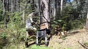 bushwear telescoping ladder stand