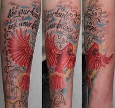male cardinal tattoo by graynd on deviantart