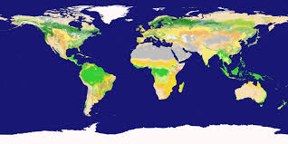 Earth World Map by Nasa Visible Earth New Land Cover Classification Maps