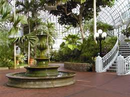 Palm House Botanical Gardens Interior Of The Historic F Wolfe Palm House At Franklin Park