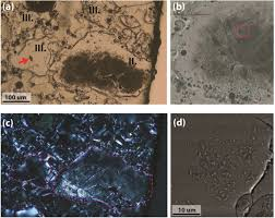 Vitrificateur No Visible Nuclear Blast Induced Nanotextures In Quartz And Zircon Within