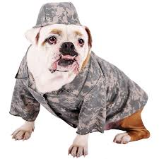 english bulldog halloween costumes army grunt pet costume buycostumes com