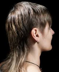 short on top long on back hairstles mullet for women hairstyle with short layers on the sides and