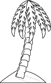 palm tree black white line art coloring book colouring hunky dory