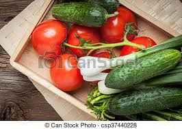 fresh vegetables from the home garden vegetables from the
