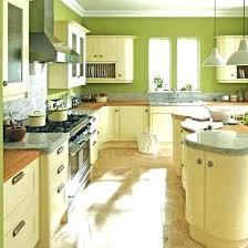 lime green kitchen ideas lime green kitchen decor tinyrx co