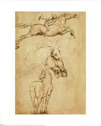 drawings da vinci posters at allposters com