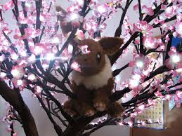 eevee in a light up cherry blossom tree by the1stweaverofdreams on
