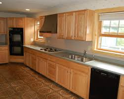 cabinet cost of new kitchen cabinets praiseworthy design for