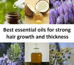 essential oils for hair growth and thickness best essential oils for strong hair growth and thickness jpg