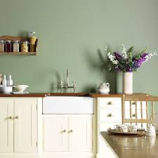 green painted kitchens interior design