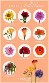 wedding flowers list flowers for fall weddings in season wedding corners