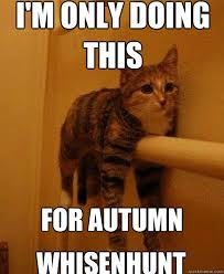 Autumn Meme - i m only doing this for autumn whisenhunt monorail cat quickmeme