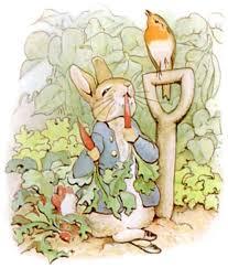 mr mcgregor s garden rabbit rabbit