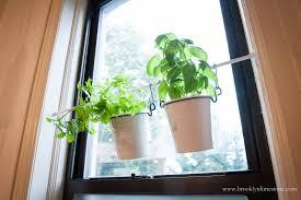 instant indoor hanging garden hack brooklyn limestone
