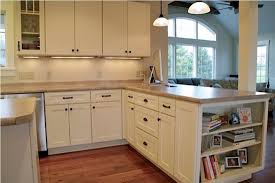 Build Shaker Style Kitchen Cabinets Thediapercake Home Trend - Shaker style kitchen cabinet
