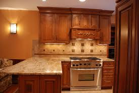 Under Cabinet Lighting Ideas Kitchen by Decor Interesting Kitchen Lighting Design With Best Seagull Under