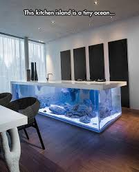 kitchen floating island an aquarium in the kitchen the meta picture