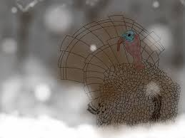 snow turkey gif thanksgiving gift by whynot233 on deviantart