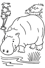 hippopotame coloring pages coloring pages for kids