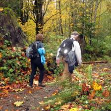 hit trail views fall color u2013 ear ground