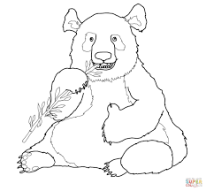funny panda coloring page free printable coloring pages
