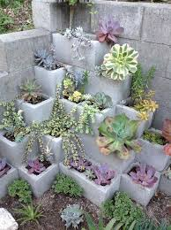 Succulent Gardens Ideas How To Beautify Your Garden Succulents Garden Gardens And Craft