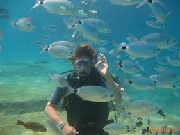 jeep snorkel underwater diving jeep safari fethiye ölüdeniz tekne turu
