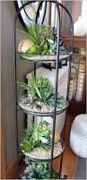 How To Plant A Garden In Your Backyard Best 25 Indoor Mini Garden Ideas On Pinterest Mini Terrarium