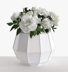 3d Flower Vase Faceted Vase Of White Peonies 3d Model